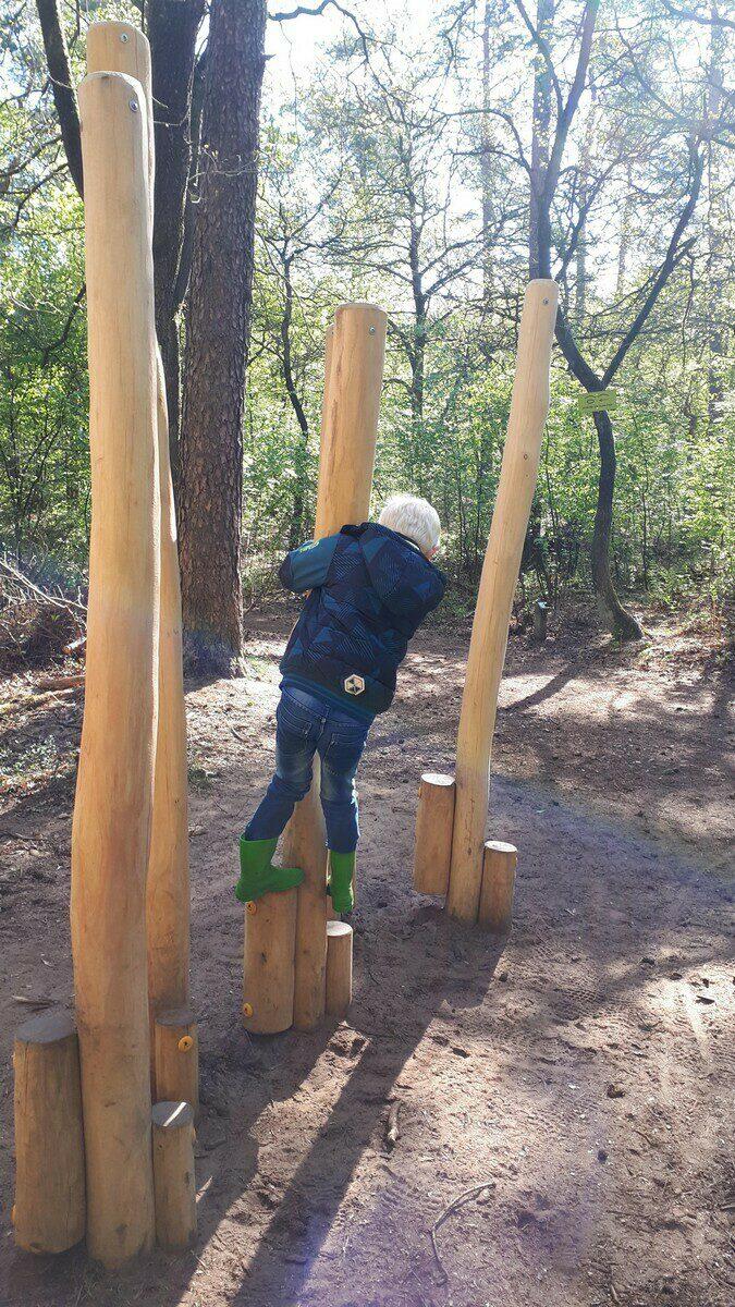 Kletterabenteuer  im Wald