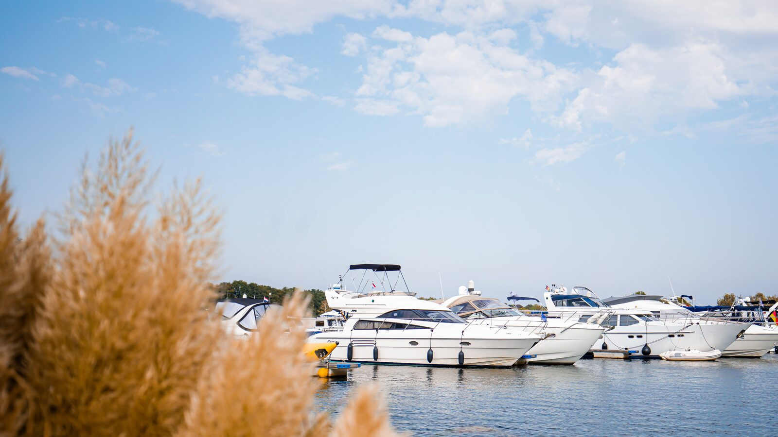 4 benefits of renting out your property at Marina Resort Leukermeer