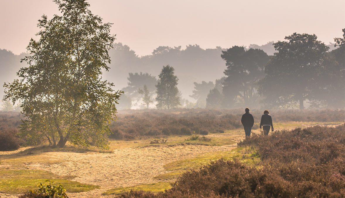 Dit zijn de mooiste onontdekte plekken voor een rustige wandeling