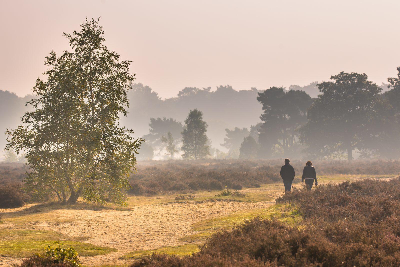 Gelderland opnieuw populair bij vakantiegangers