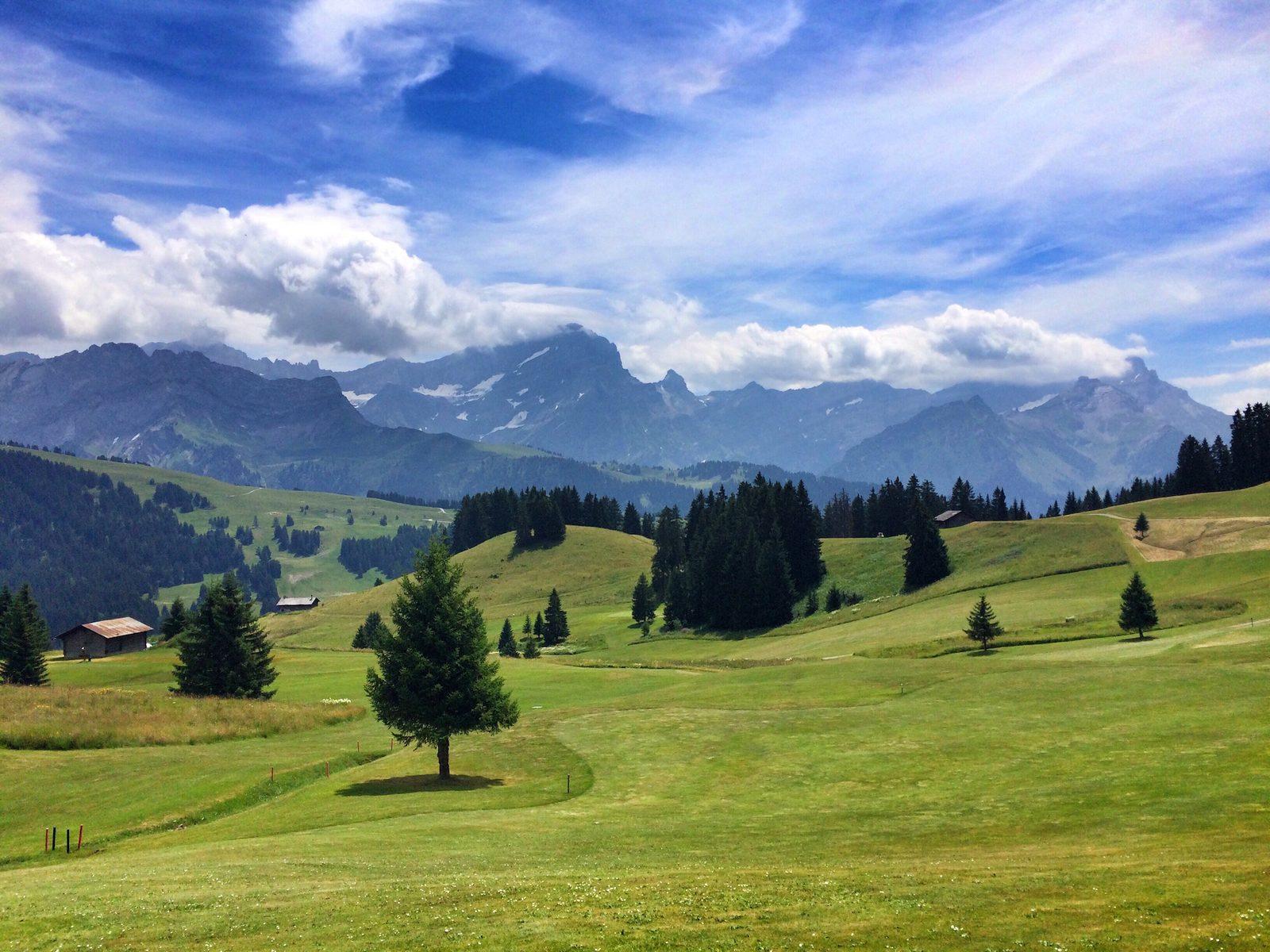 Golfen im Golfclub Gams-Werdenberg, -Bad Ragaz, -Heidiland, -Dormat/Ems oder Lenzerheideg, von Ihrer luxuriösen Ferienunterkunft im Resort Walensee Schweiz aus