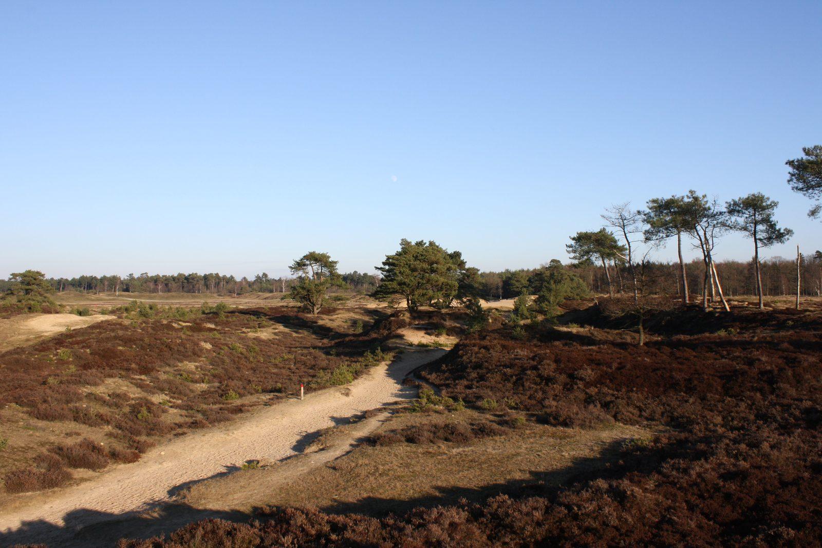 5x de mooiste wandelroutes in Drenthe