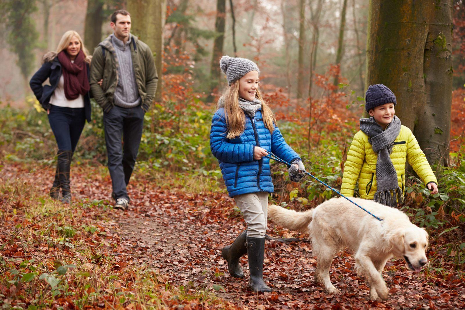Vakantiehuisje Zuid Limburg met hond