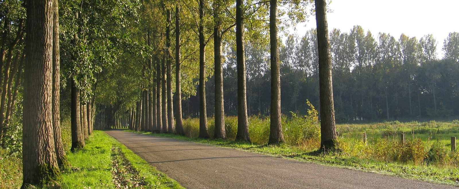 Groepsaccommodaties Noord-Brabant