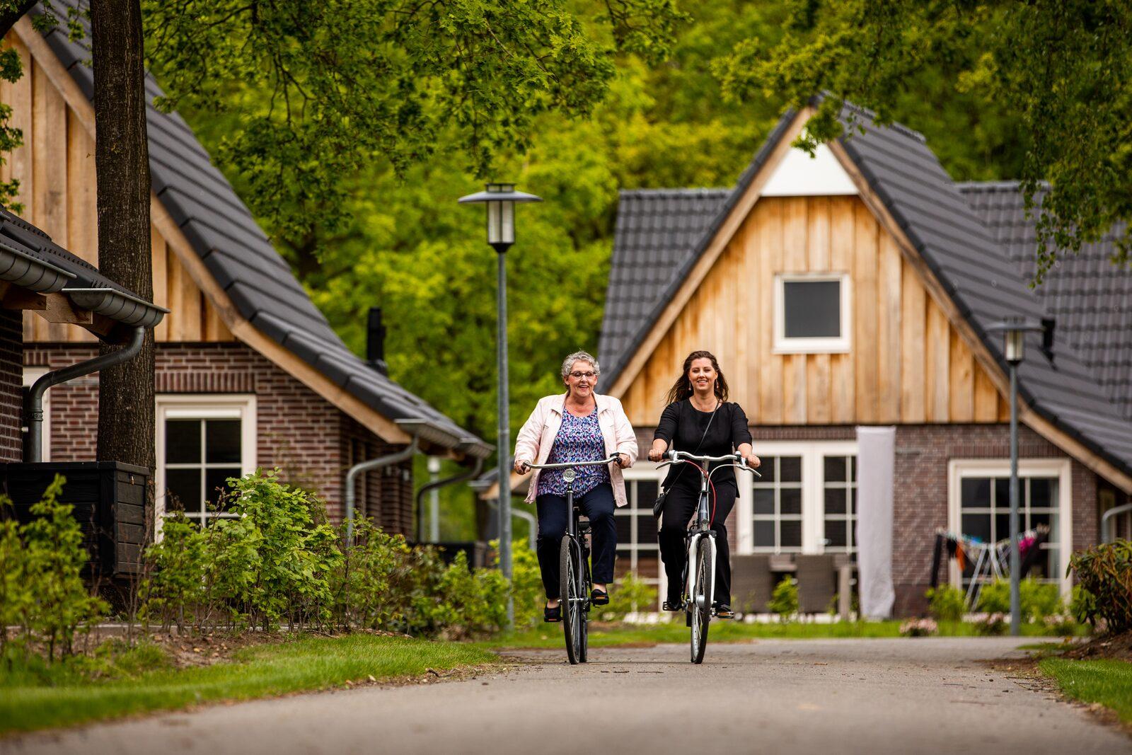 Renting bicycles 🚲