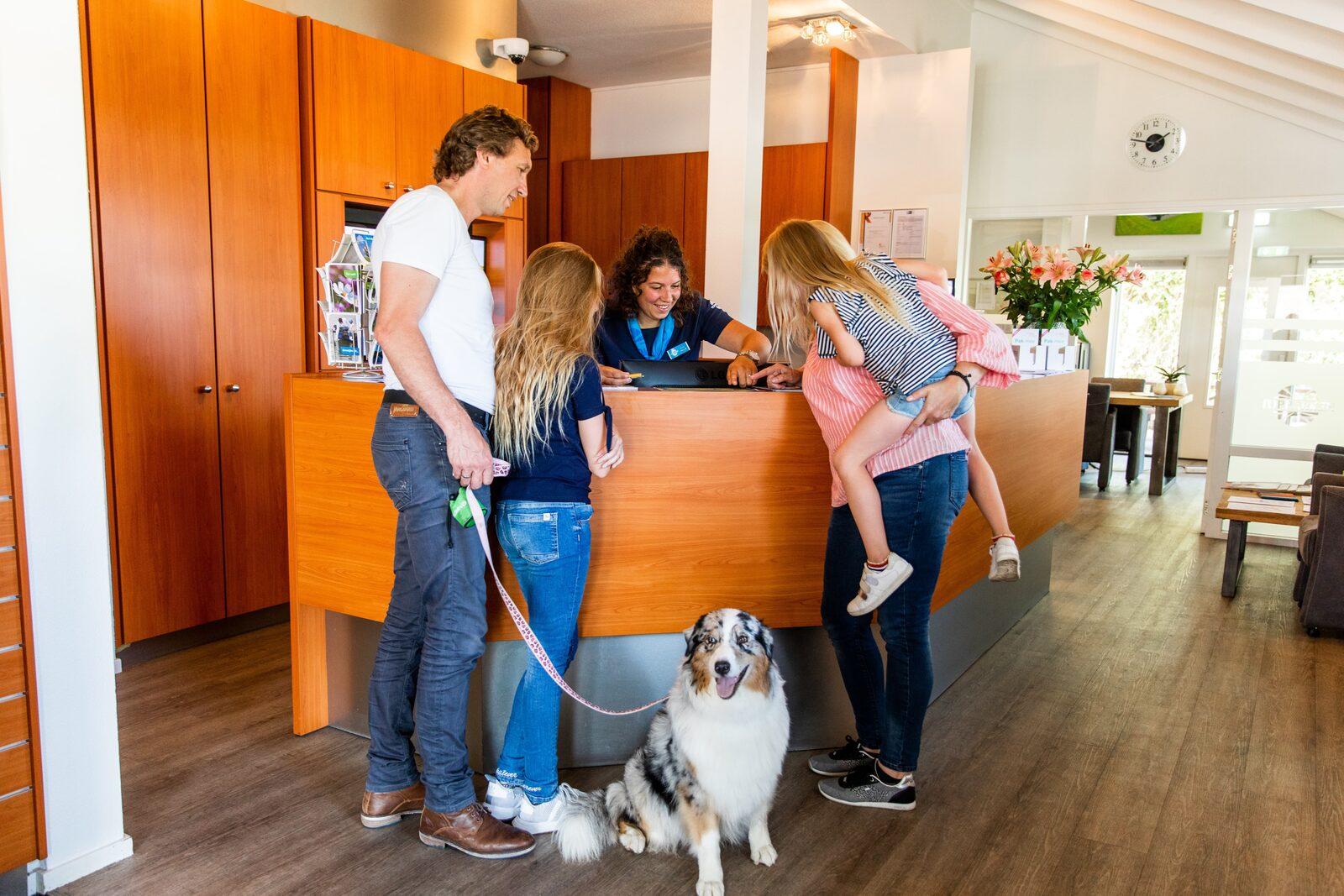 4 topbestemmingen in Nederland voor een vakantie met uw hond